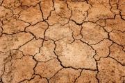 Combate à seca: 50 Milhões de Euros para ajuda humanitária